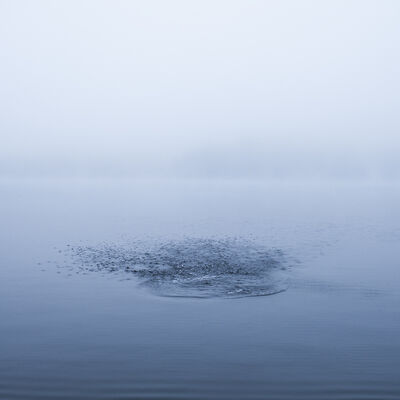 Cig Harvey, 'Lake Megunticook, Camden, Maine'