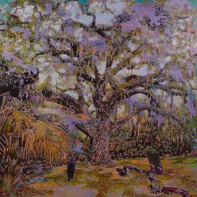 Bradley Castellanos, 'Fairchild Oak ', 2020