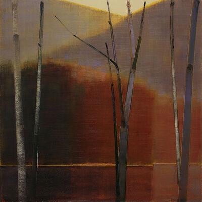 Stephen Pentak, '2014, X.IV', 2014