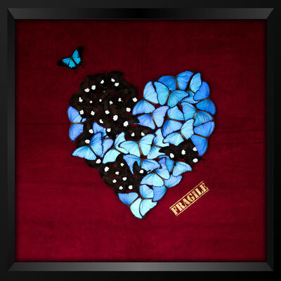 SN, 'Butterfly Heart (Red)', 2018