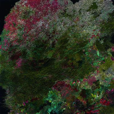 Zhou Fan 周范, 'A letter to sea anemone', 2013