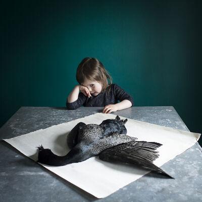 Cig Harvey, 'Scout & the Found Bird', 2014