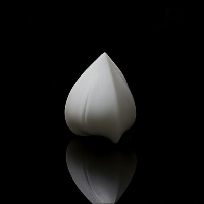 Song Hongquan, 'Buckwheat 荞麦', 2009