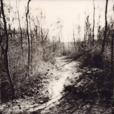Julia Beyer, 'Wander And Get Lost', 2015