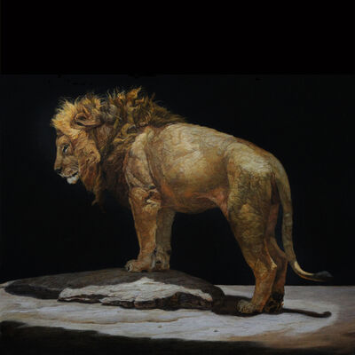 Patricia Traub, 'Lion Standing on a Kopjes', 2019