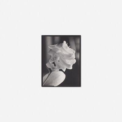 Willy Kessels, 'Flower', c. 1930