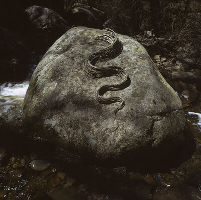Andy Goldsworthy, 'Moved to another boulder reworked curved sticks into a small wood river, Hunter Creek, Colorado, May 2006', 2006