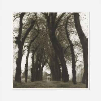 Lynn Geesaman, 'Parc de Canon, France from Poetics of Place.', 1995