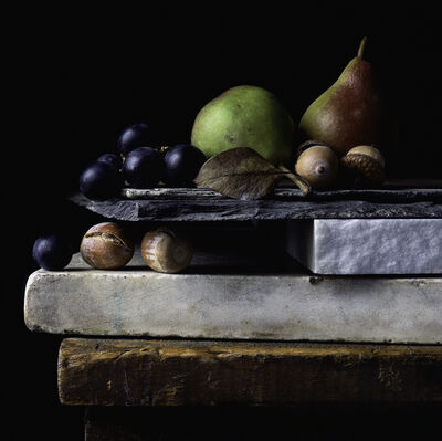 Paul Cary Goldberg, 'Still Life with Acorns, Grapes, and Pears', 2014
