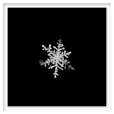 Doug & Mike Starn, 'Snow Study 5', 2005