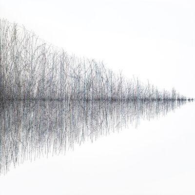 Barbara Kolo, 'Immersion', 2019