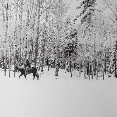 Scott T. Baxter, 'Blue along the Aspens, Slade Ranch, Apache County ', 2016
