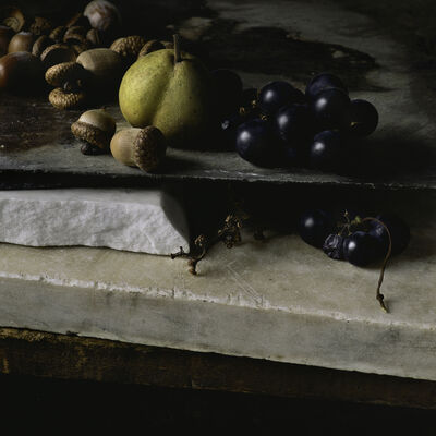 Paul Cary Goldberg, 'Still Life with Acorns, Pear and Grapes'
