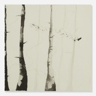 Cat Clifford, 'Seeds & Bird in Burnt Forest', 2006