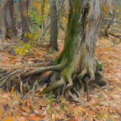 Quang Ho, 'Exposed Root', 2020