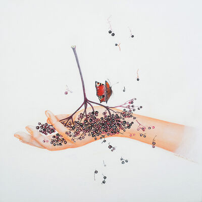 Corinne Boureau, 'Elderberries', 2016