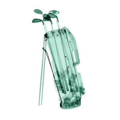 David Arky, 'Golf Bag', 2019