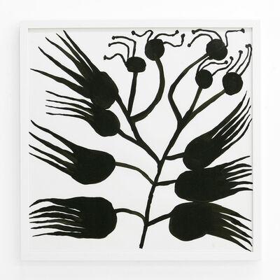 Lena Gustafson, 'Botanical 7', 2019