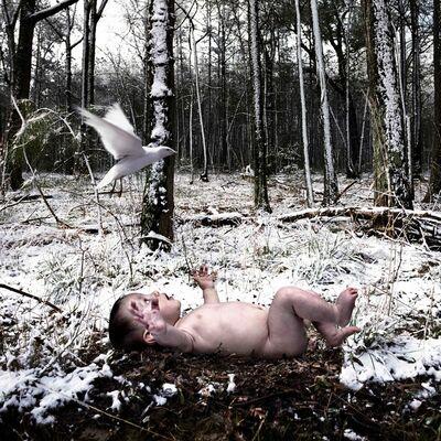 Tom Chambers, 'Decembers Child', 2007