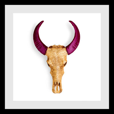 Angela Morris-Winmill, 'Gold Lace and Plum Buffalo Skull ', 2019