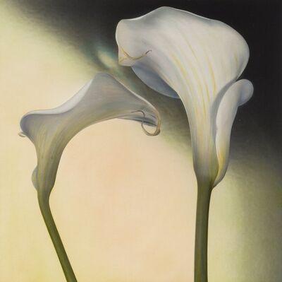 Brigitte Carnochan, 'Calla Lily III', 1996