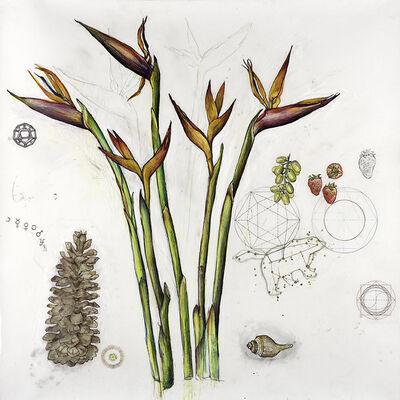 Elli Crocker, 'Birds of Paradise / Sacred Geometries', 2007
