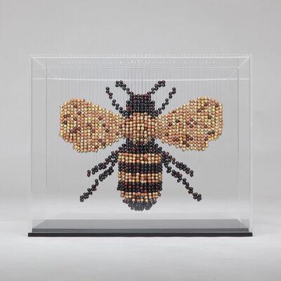 Natasja van der Meer, 'Bee', 2017