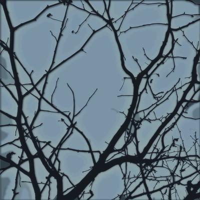 Carlos Aguirre, 'Tree 19', 2014