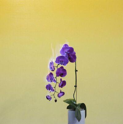 Jiang Zhi 蒋志, 'Love Letter No.03', 2011