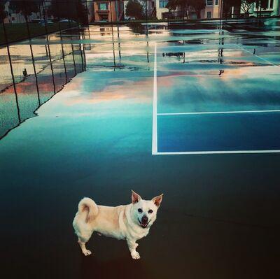 Nancer Lemoins, 'Tennis Court OZZEL', 2019