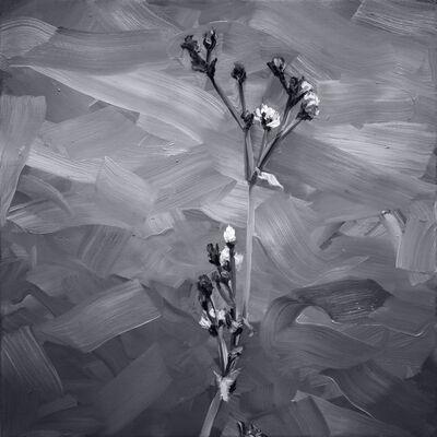 Yoann Mérienne, 'Fleurs III ', 2019