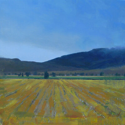 Tom Howard, 'Fields of Gold', 2014