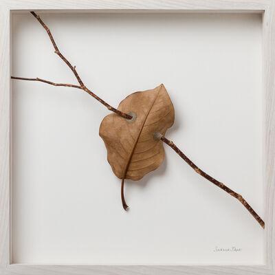 Susanna Bauer, 'Suspended', 2018