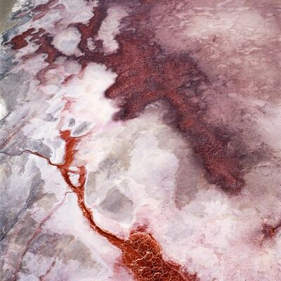 David Maisel, 'The Lake Project 35', 2001-2002