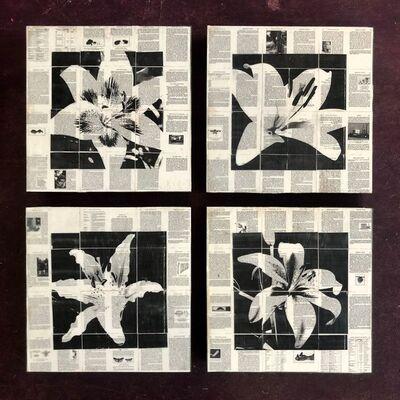 Mike Saijo, 'Lilies ', 2019