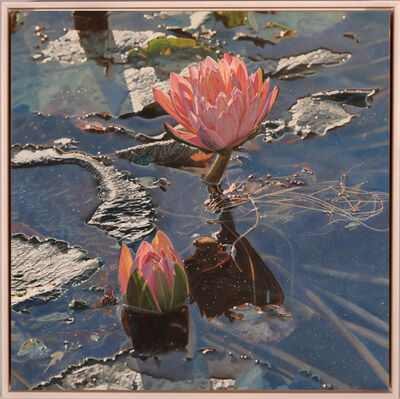 Jeffrey Vaughn, 'Water Lilly's After a Storm', 2019