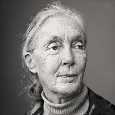 Martin Schoeller, 'Jane Goodall', 2010