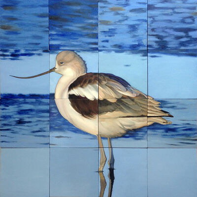 Jeff Cohen, 'Winter Avocet', 2016