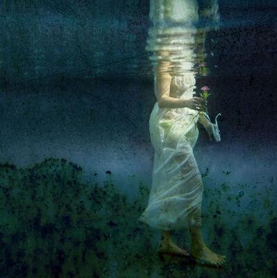 Kathleen Wilke, 'Gift', 2013