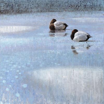 Ewoud De Groot, 'Resting Pochards'