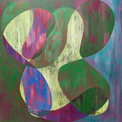 Steve DiBenedetto, 'Domestic paralysis ', 1970-2010
