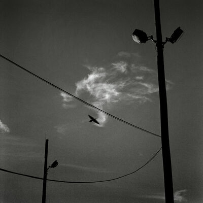 Cheng Chang WU, '情緒地景-電線、鳥與雲 Seeing and Construction-Wire, Bird and Cloud', 1999