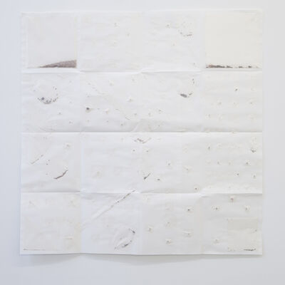 Audrey Cottin, 'Seeds Arrangement #0001', 2018
