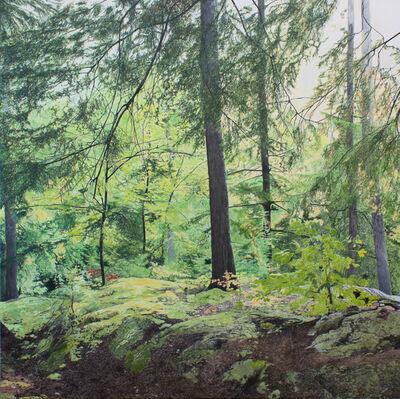 Julie Desmarais, 'À travers les branches (Parc des Chutes Dorwin, Rawdon, Québec)', 2019