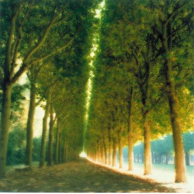 Lynn Geesaman, 'Parc de Sceaux, France (10-97-7c-8)', 1997