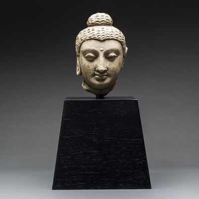 Unknown Asian, 'Gandharan Head of the Buddha', 100 AD to 400 AD