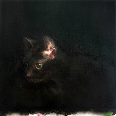 Anthony Goicolea, 'Cat's Ear', 2019