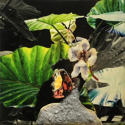 Gavin Benjamin, 'Welcome to the Jungle (mask)', 2018
