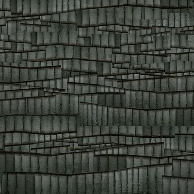 Steve Sabella, 'Metamorphosis (2)', 2012