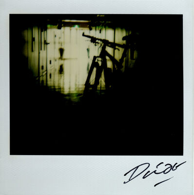 Daido Moriyama, 'Untitled', 2008